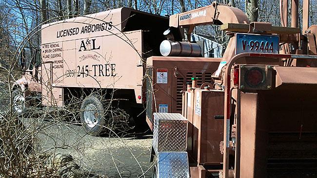 al-tree-truck